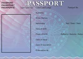 30 Blank Passport Templates