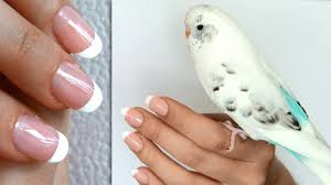 French Manicure At Home Without Tape Or Stickers - DIY Nail ... Nail Art For Beginners 20 No Tools Valentines Day French How To Do French Manicure On Short Nails Image Manicure Simple Nail Designs For Anytime Ideas Gel Designs Short Nails Incredible How Best 25 Manicures Ideas Pinterest My Summer Beachy Pink And White With A Polish At Home Tutorial Youtube Tip Easy Images Design Cute Double To Get Popxo