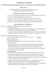 Resume Summary Example Objective Professional Experience Samples Examples For Freshers By Camille Leonardi Cool