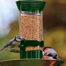 This contemporary bird feeder is ideal to use with peanuts large