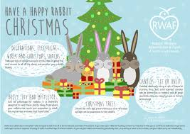 Are Christmas Trees Poisonous To Dogs Uk by Resources U2013 Rabbit Welfare Association U0026 Fund Rwaf