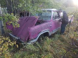 Pink Panther Dodge Truck?? | For C Bodies Only Classic Mopar Forum