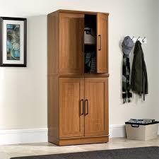 411967 sauder homeplus base cabinet in sienna oak finish