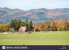 Old Barns On The Edge Of A Vermont Field In The Fall With The ... Xlentcrap Barns Flowers Stuff 2009 In Vermont The Fall Stock Photo Royalty Free Image A New England Barn Fall Foliage Sigh Farms And Fecyrmbarnactorewmailpouchfallfoliagetrees Is A Perfect Time For Drive To See National Barn Five Converted Rent This Itll Make You See Red Or Not Warming Could Dull Tree Dairy Cows Grazing Pasture With Dairy Barns Michigan Churches Mills Covered Mike Of Nipmoose Engagement Beauty Pa Leela Fish Rustic Winter Scene Themes Summer Houses Decorations
