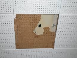 Celotex Ceiling Tiles Asbestos by Drop Ceiling Tiles Asbestos Asbestos Ceiling Tiles Canada Danger