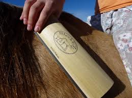Horse Hair Shedding Blade by Sleekez Notes From Dawn