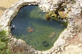 Backyard Fish Pond | Decor References Garnedgingsteishplantsforpond Outdoor Decor Backyard With A Large Fish Pond And Then Rock Backyard 8 Small Ideas Front Yard Ponds Backyards Wonderful How To Build For Koi Loving And Caring For Our Poofing The Pillows Project Photos Ideasnhchester Rockingham In Large Bed Scanners Patio Heater Flame Tube Beautiful Classical Design Garden Well Cared Indoor Waterfall Eadda Lawn Style Feat Artificial 18 Best Diy Designs 2017