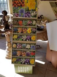 fall bulbs plant now for flowers