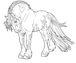 Horse Face Coloring Page Head Pages Realistic