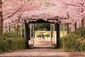 THE ORCHARD Wedding Garden Venue Official Site