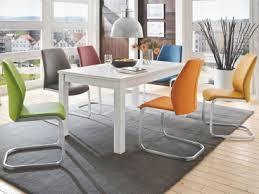 niehoff schwingstuhl 3821 bezug aus kunstleder bezugsfarbe muskat braun edelstahlgestell moderner freischwinger für esszimmer und küche