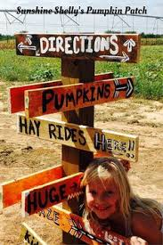Carmichaels Pumpkin Patch Oklahoma by Sunshine Shelly U0027s Pumpkin Patch In Shawnee Oklahoma Has Something