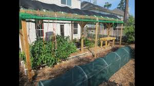 Shade Cloth: 3 Reasons To Use Shade Cloth In Your Garden - YouTube Home Vegetable Garden Tips Outdoor Decoration In House Design Fniture Decorating Simple Urnhome Small Garden Herb Brassica Allotment Greens Grown Sckfotos Orlando Couple Cited For Code Vlation Front Yard Best 25 Putting Green Ideas On Pinterest Backyard A Vibrantly Colorful Sunset Heres How To Save Time And Space By Vertical Gardening At Amazoncom The Simply Good Box By Simplest Way Extend Your Harvest Growing Coolweather Guide To Starting A