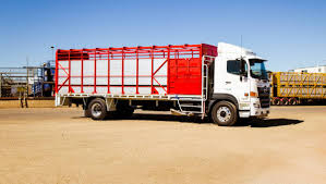 Hino Saves Time And Money | Queensland Country Life Welcome To Ranch Trucks Trailers Cattle Bodery Wilson Livestock Pinterest Cars New Ud For Sale Vcv Rockhampton Central Queensland The Trucknet Uk Drivers Roundtable View Topic Gilders Pin By Larry Murray On Cattle Trucks Mini For Suzuki Mitsubishi Daihatsu Subaru Mazda 12002 Road Train Highway Replicas Transport Vehicles Horsezone Page 1 Newark Scanias Geary Operation Arod Redneck Lewis Family Farm Deraad Trucking