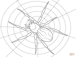 Click The Lace Webbed Spider Coloring Pages