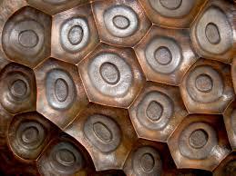 Copper Repousse Wall Art