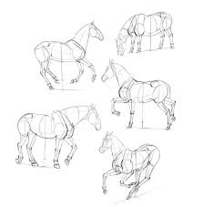 How To Draw Horses: Step-by-Step Instructions How To Draw The Atv With A Pencil Step By Pick Up Truck Drawing Car Reviews 2018 Page Shows To Learn Step By Draw A Toy Tipper 2 Mack 3d Pickup 1 Cakepins Truck Youtube Cars Trucks Sbystep Itructions For 28 Different Vehicles Simple Dump Printable Drawing Sheet Diesel Drawings Best Of Monster An F150 Ford