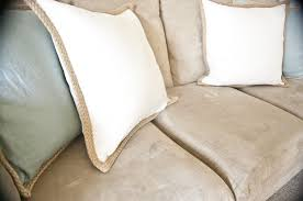 Mold on Pillow and Cushions – Buzzardfilm How To Cleaning