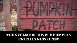 Pumpkin Patch Sioux Falls Sd by Hy Vee The Sycamore Hy Vee Pumpkin Patch Is Now Open