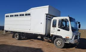 Trucks For Sale | Horseseller Used Commercials Sell Used Trucks Vans For Sale Commercial Horse Truck Mitsubishi Fk600 Floats For Sale Nsw South Trucks Horseller Horse In Ireland Donedealie Equine Motorcoach Stephex Horsetrucks Dump Cversions Fleet Sales Ogden Ut The Wkhorse W15 Electric With A Lower Total Cost Of Prestige Transportdicated Safe And Reliable Eqcruiser Builders Of The Finest Luxury Horseboxes Uk
