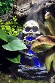 African Dwarf Frog Shedding Or Sick by 29 Best Terrarium Décor Images On Pinterest Reptiles Terrarium
