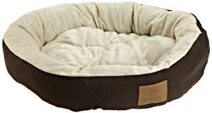 Petco Dog Beds by Large Dog Beds Petco Bed Home Design Ideas Kxp9mempko Pertaining