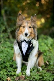 The Smead Wedding