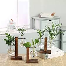 sudu wohnzimmer glas massivholz dekorative hydrokultur