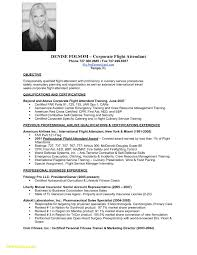 Flight Attendant Resume Sample New Travel Consultant Cover Letter No Experience Of Awful Example Full
