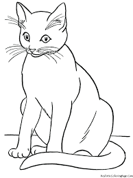 Coloring Pictures Of Cats And Dogs Creative Book Pages Realistic Printable Full Size