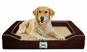 Serta Dog Beds by Amazon Com Sealy Dog Bed For Dogs X Large Pet Supplies