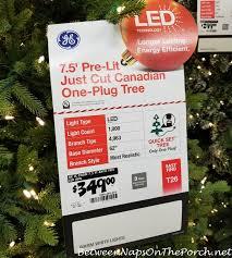 GE Just Cut Canadian Tree
