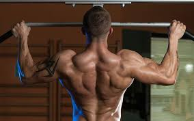 18 Week Chin Up Dip Program For An Impressive Upper Body Muscle