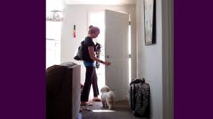 How to Get Your Dog to Let You Walk Out the Door