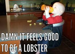 Phil And Teds Lobster High Chair by 8bitdad Review Phil U0026 Teds Lobster Chair