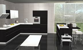 Image Of Contemporary Black And White Kitchen Decor