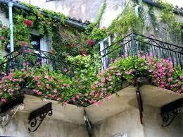 Balcony Planter Ideas Large Garden Small Planting
