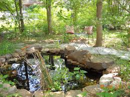 Chickadee Garden: Backyard Habitat Frog Lodge Gabe Feathers Mcgee The Whisper Folks How To Create A Wildlife Pond Hgtv Building Ogfriendly Build On Budget Youtube Backyard Home Landscapings Ideas Garden Diy Project Full Video To Make Chickadee Habitat Design And Build Wildlife Pond Saga For Frogs Part 5 Outdoor Patio Cute Round Koi Mixed With