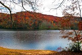 19 Places to Enjoy Fall Foliage in Virginia Virginia s Travel