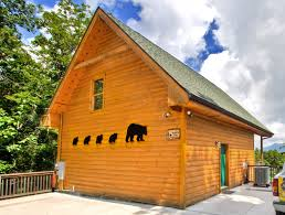 1 Bedroom Cabins In Pigeon Forge Tn by One Bedroom Gatlinburg Cabin Rentals In Tennessee