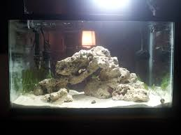 Nick's Nano Reef | AquaScaping World Forum Aquarium Aquascaping Rocks Aquascape Designs Ideas Project Reef Rock 21 Dry Walt Smith Bulk Supply Review Real Generation 4 Digitalreefs News Info How To Live Purple Live Rock Youtube Updated Clear Pics Newbies Attempt At Aquascaping So Far 3reef Design Aquafishvietcom Bring Back The Wall News Builders Keeping Austin Club Walls For A Tank Callorecom River Suggestion Planted Forum