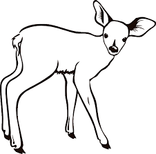 Outstanding Deer Head Coloring Pages Exactly Inspiration Article