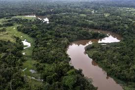 amazonia si e social empresas chinas y los peligros de megaobras en la amazonía boliviana