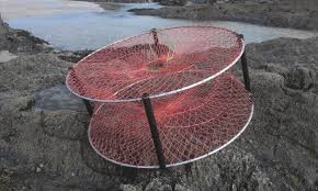 Decorative Lobster Trap Uk by Huahine U0027s Ancient Fish Traps Fish Traps Pinterest Tahiti