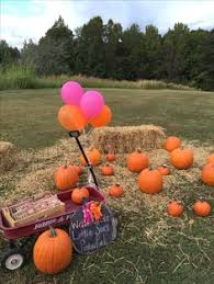 The Great Pumpkin Patch Pueblo Colorado by Pumpkins Fall 1st Birthday Birthday Party Ideas Fall 1st