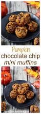 Pumpkin Pie Blizzard Calories Mini by 257 Best Fall Recipes Images On Pinterest Fall Recipes Pumpkin