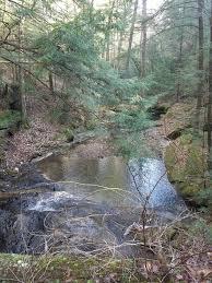 Thompson Creek Trail Campsites AL
