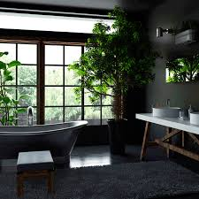 Plants In Bathroom Images by Youth Time Magazine What Can Grow In The Bathroom Plants That