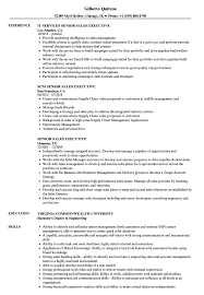 Download Senior Sales Executive Resume Sample As Image File