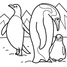 Penguin Family Coloring Page Image Pages